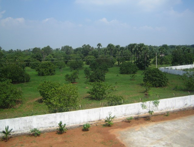 Rajanagaram in Real Estate
