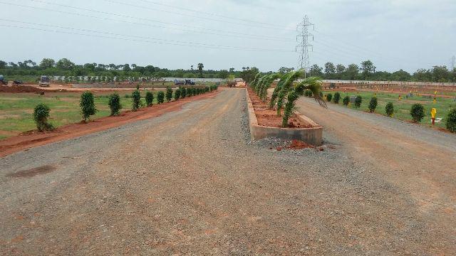 Pallakadiyam in Real Estate