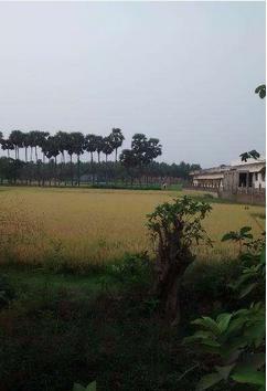 Real Estate in Konda Guntur
