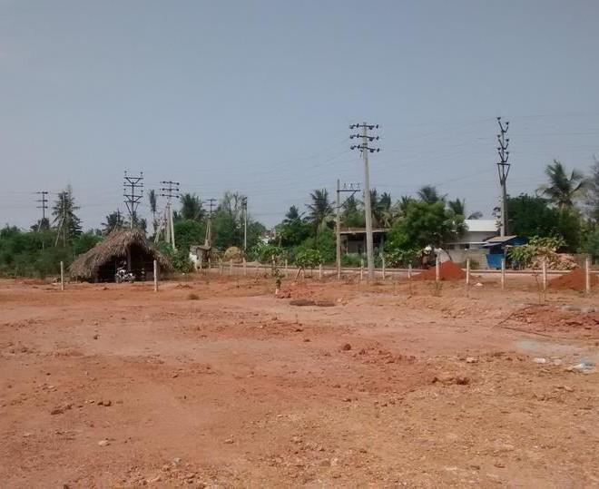 Real estate in Samarlakota