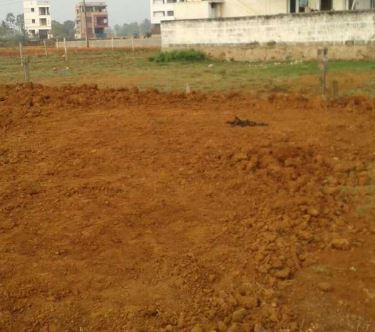 Vasanthnagar Real Estate