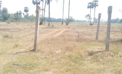 Real Estate in Pithapuram
