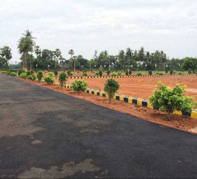 15-07-216-02, plot in pitapuram, kakinada