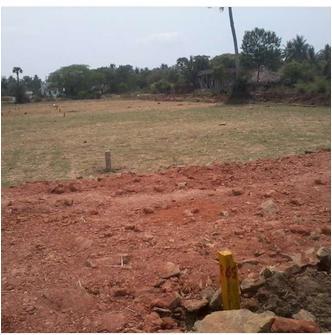 Katavarm in RajahmundryRealEstate