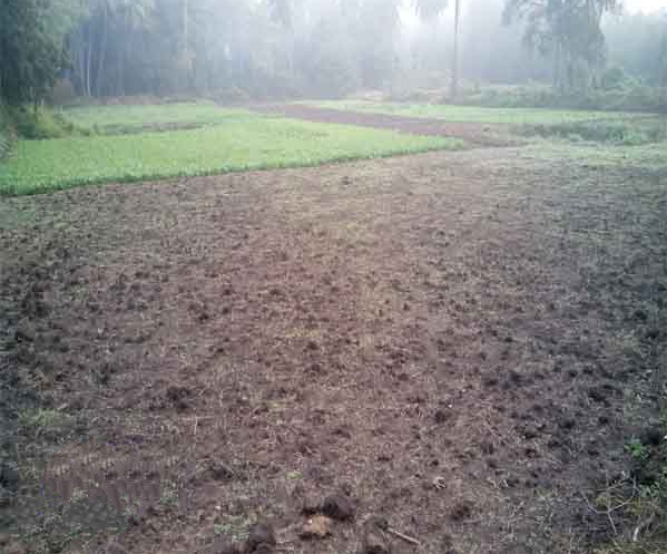 Plot at Rajahmundry