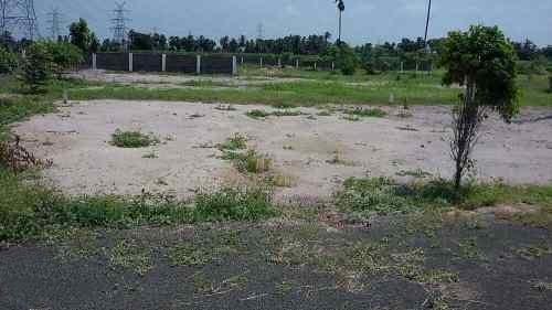 Plot for sale in Bommoru in Rajahmundry