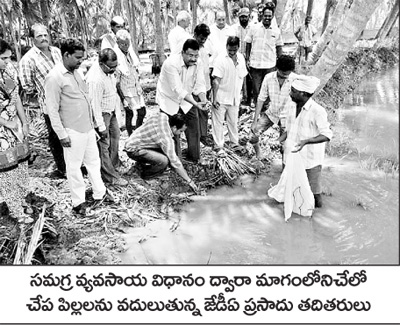 1.90 lakh hectares in the district varinatlu