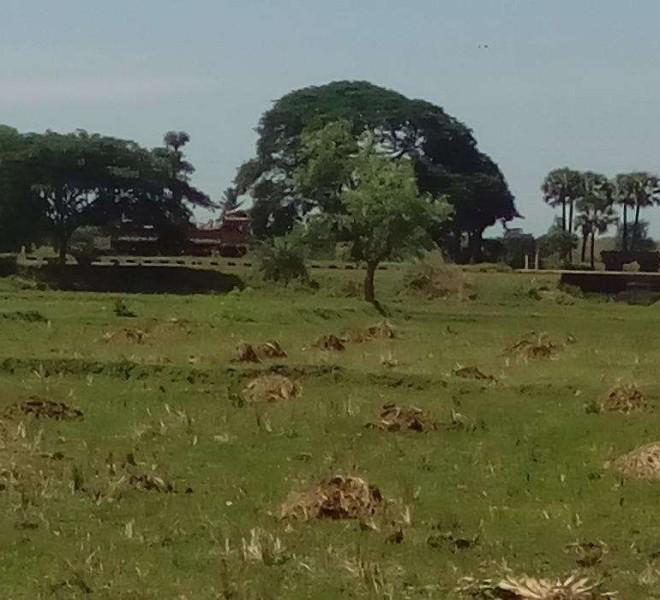 kovvur agriculture lands