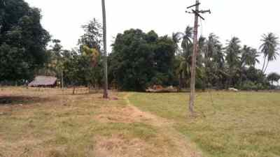 Land Plot For Sale in Pithapuram, Kakinada.
