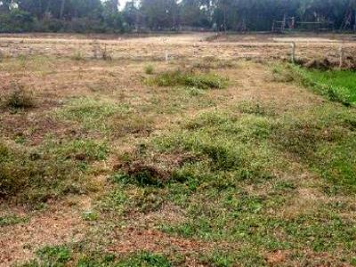 Land Sale in West Godavari