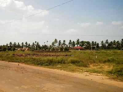 land sale in tanuku