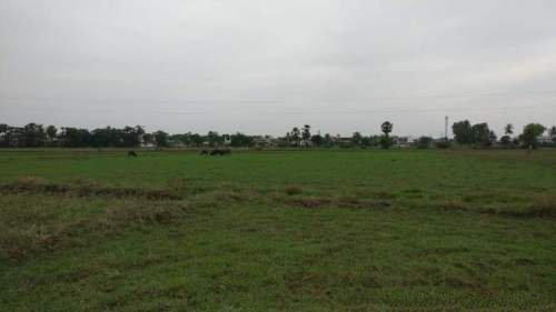 Residential Land For Sale In Venkatapuram