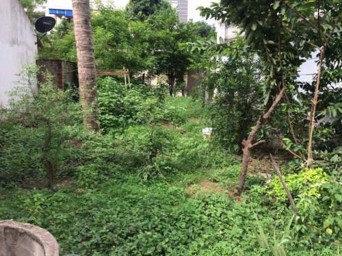 Residential Land For Sale In Pratap Nagar