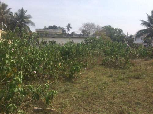 Residential Land For Sale In Vakalapudi