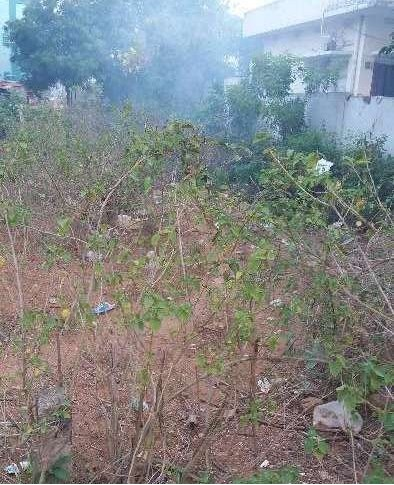 Residential Land For Sale In Lalachervu,