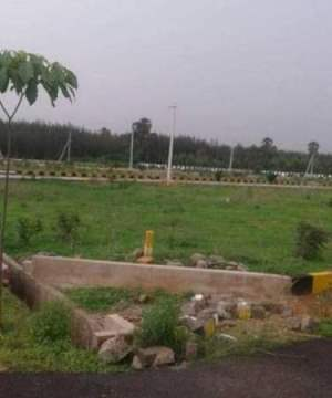 Residential Plots For Sale In Konthamuru