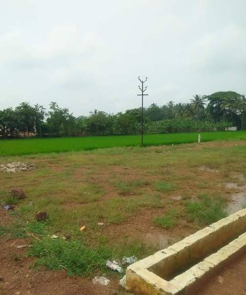 Residential Land For Sale In Pithapuram