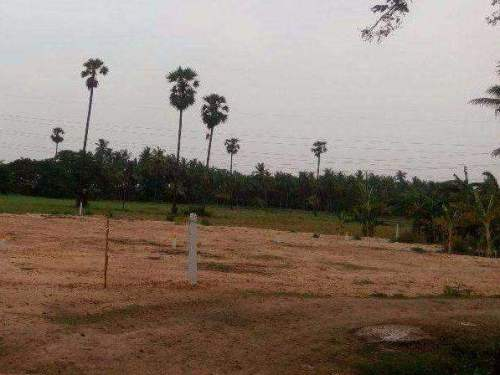 Residential Land For Sale In Tanuku