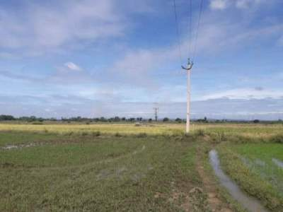 Agricultural Land For Sale Near ADB Rd