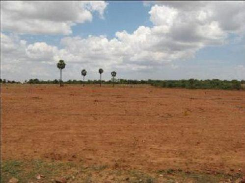 Residential Land For Sale In Bommuru,