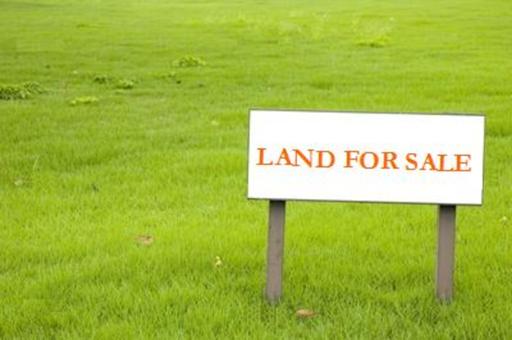 land for sale in penumarti