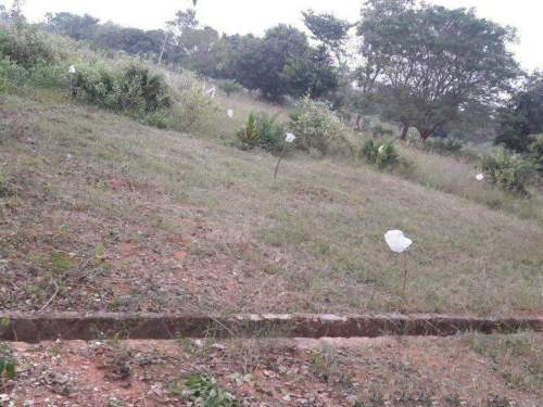 Residential Land For Sale In Diwancheruvu