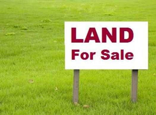 Residential Land For Sale In Kakinada